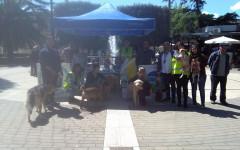 Vincitori Riempi la ciotola: Associazione Anta Onlus Sava