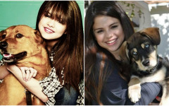 Selena Gomez and Her Love for Rescuing Dogs