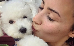 Demi Lovato and her Cuddly Pooches