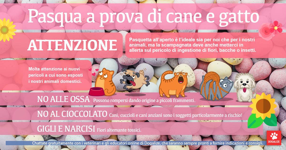 Infografica: Pasqua a prova di cani e gatti