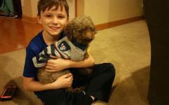 Bambino adotta cane, il più vecchio del canile