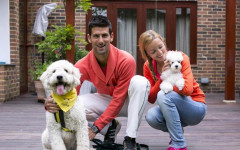 Novak Djokovic and His Poodle are Inseparable