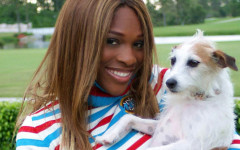 Serena Williams and her background with dogs