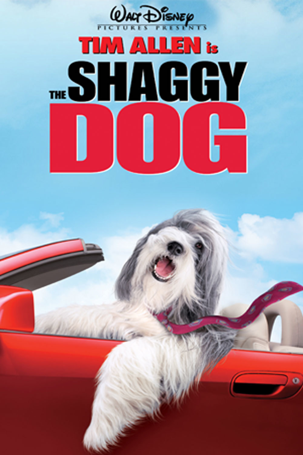 The Shaggy Dog: The 2006 Family Film