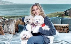 Cani clonati di Barbra Streisand: le due piccole di casa