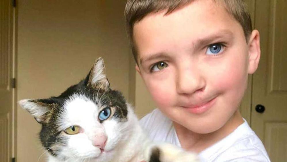 Gatto e bambino: un'amicizia speciale che da conforto