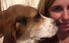 Cane salva donna scoprendo un cancro alla pelle