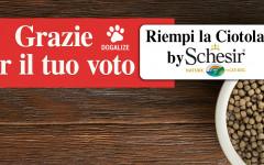 Riempi la Ciotola by Schesir: terminata iniziativa