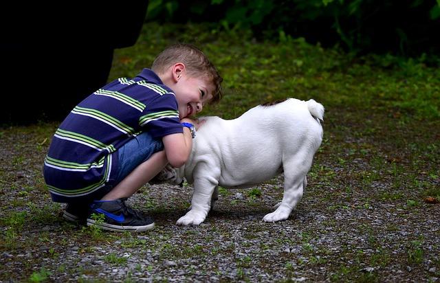 Bambini e cani: dagli animali si impara la compassione
