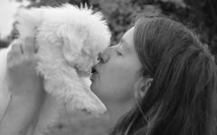 Bacio del cane: meno batteri che in quello dell'uomo