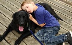 Vite e bulloni: il progetto pet therapy contro il bullismo