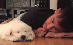 Neymar Jr. and his love for his beautiful dogs