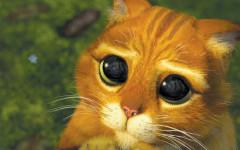 Gato Shrek: ¿conoces al gato con Botas?