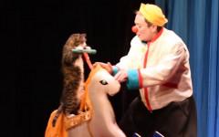 Teatro dei Gatti di Mosca: spettacolo o maltrattamento?