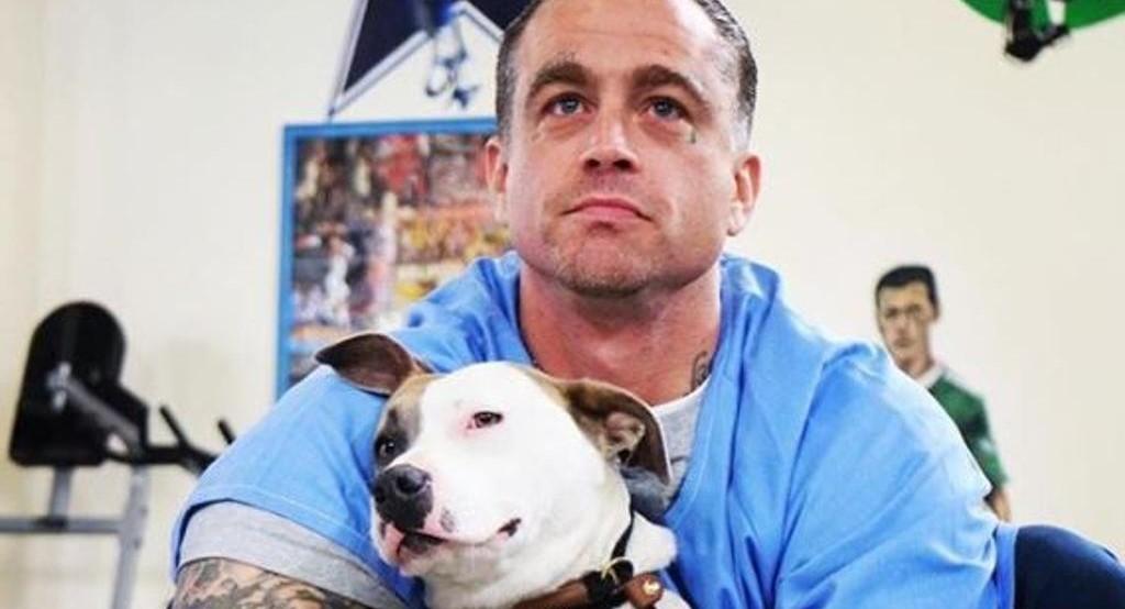 Cani randagi in prigione insegnano cos'è l'amore