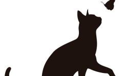 Silueta de gato: todo sobre siluetas de gato