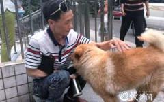 Cane aspetta padrone ogni giorno in metro, per 12 ore