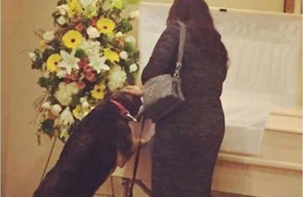 Cane al funerale del suo umano, può finalmente trovare pace