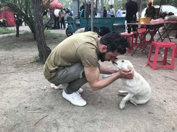 Yulin Festival: rifugio italiano per i cani salvati dal macello