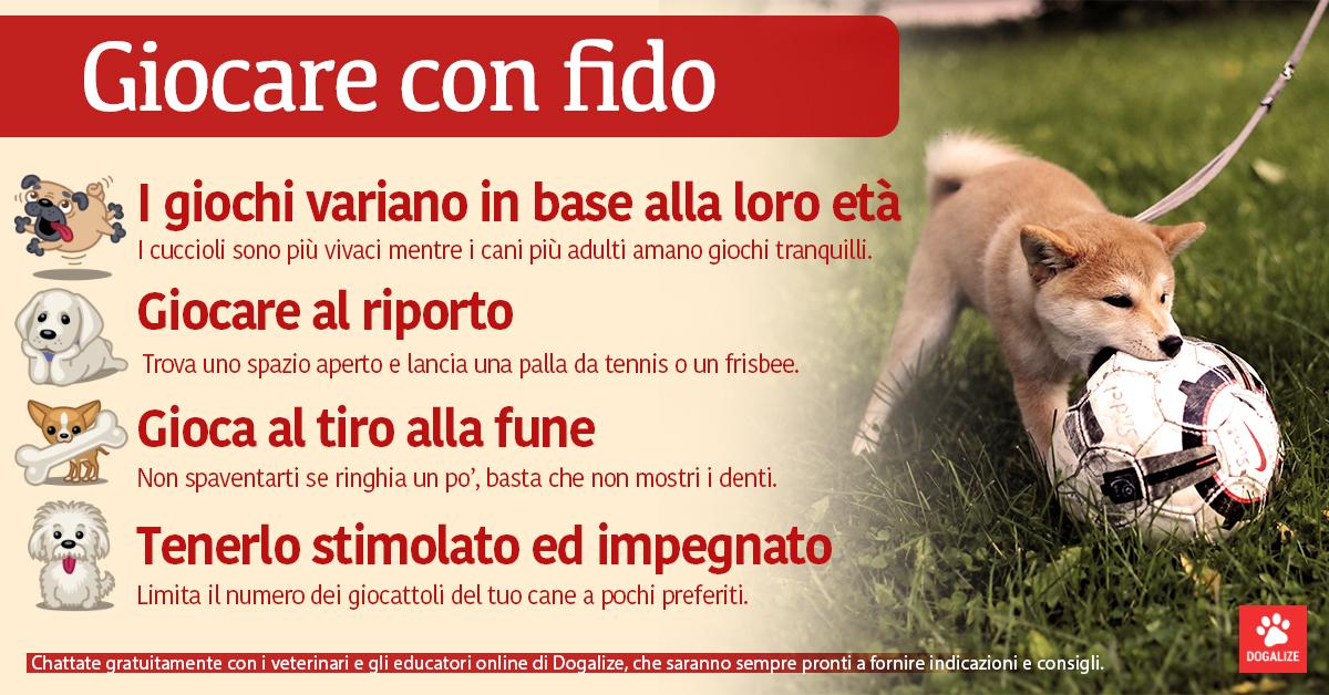 Infografica: giocare con il cane, tutti i consigli