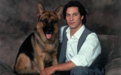 Rex perro policía: un campeón de las pantallas