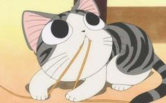 Gato anime: mininos idealizados