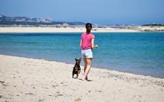 Spiagge per cani Friuli Venezia Giulia: mete petfriendly