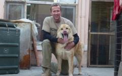 Soldato salva cane in Afghanistan e nasce un rifugio