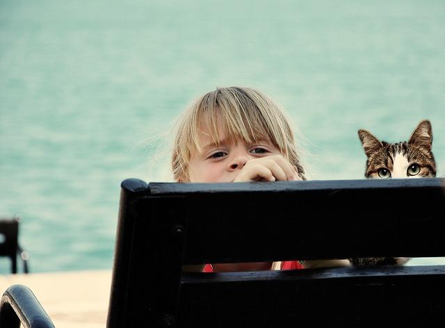 Far interagire gatti e bambini: qualche consiglio su come fare