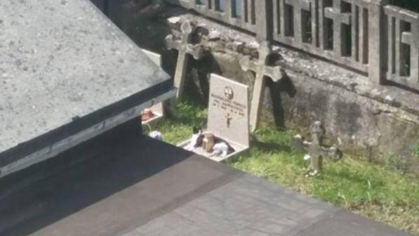 Gatte sulla tomba della padrona, il suo posto preferito