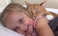 Gatto protegge bambina e la ascolta leggere
