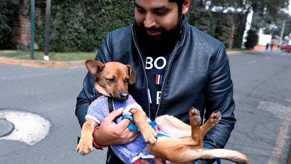 Salva cane in Russia conosciuto durante i mondiali
