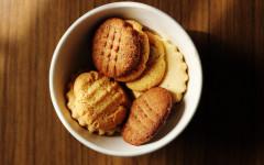 Biscotti ai mirtilli e basilico per cani: ricette per cani