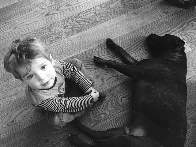 Superare la morte del proprio animale: come aiutare i bambini
