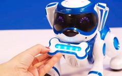 Teksta perro robot: una mascota moderna