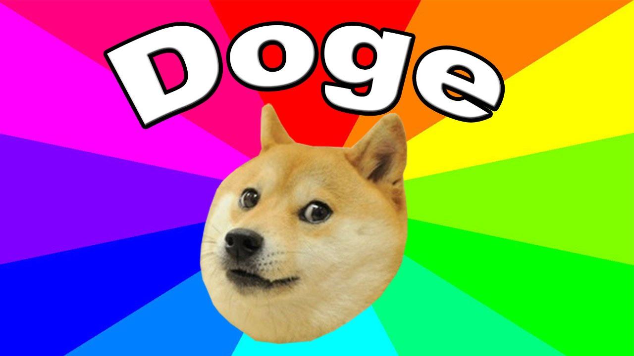 Kabosu the doge: il meme più famoso del web