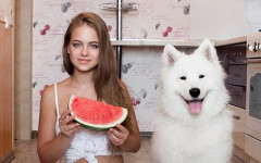 Can dogs eat watermelon? Yes, but with caution