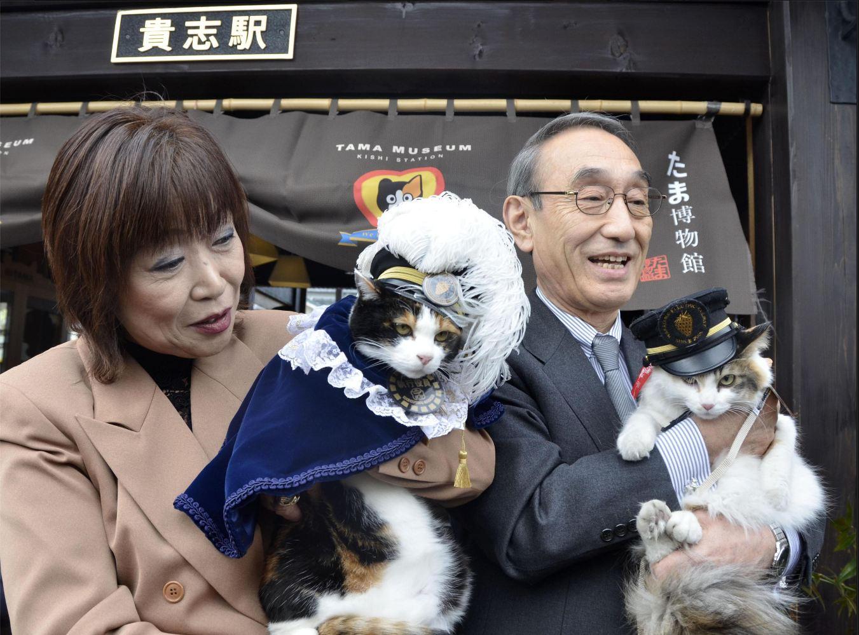 Tama gatta capostazione: dal Giappone al resto del mondo