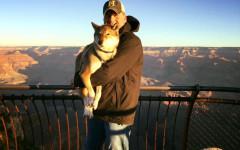 Viaggio con cane malato: le ultime avventure di Paul e Mura