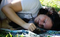 Señales de que tu gato te quiere: un amor verdadero