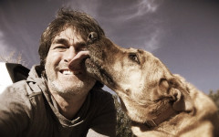 Dog lick face: Why do dogs lick human faces?