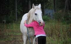 Bambini e cavalli: come risolvere la troppa timidezza