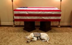 Sully cane di Bush veglia ancora il suo presidente