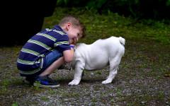 Perros y niños: beneficios de las relaciones entre perros y niños