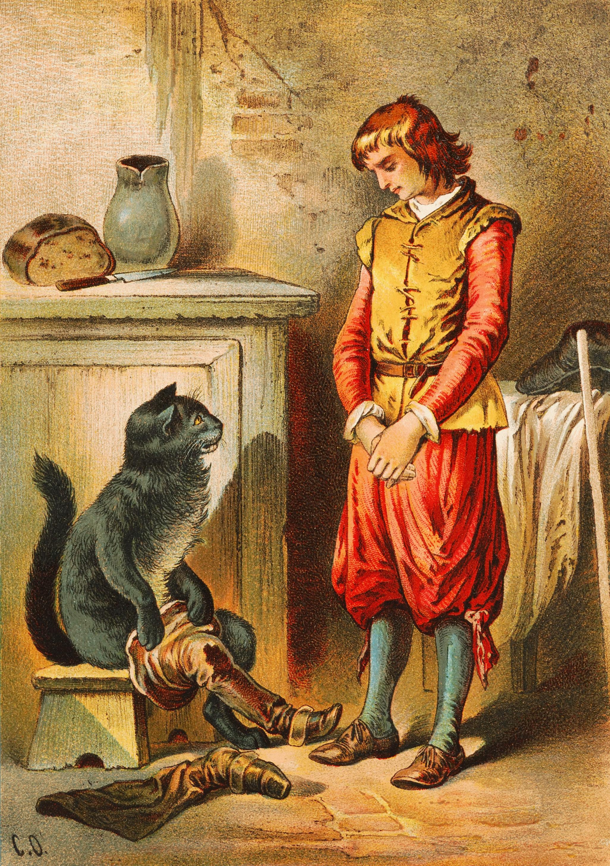 Gato con botas