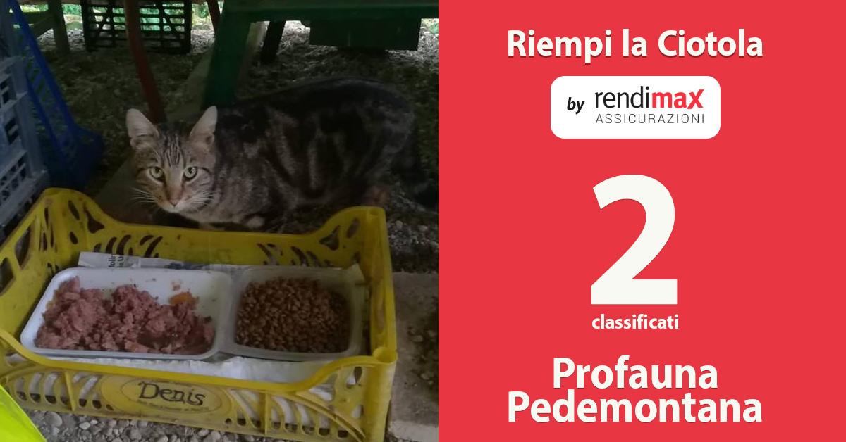 profauna_pedemontana